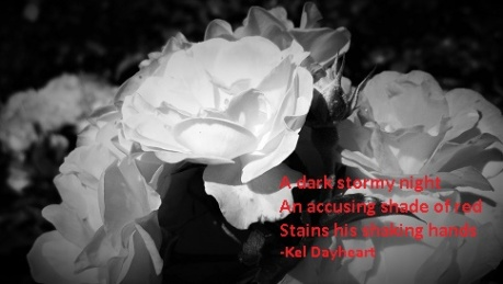 A dark stormy night/ An accusing shade of red/ Stains his shaking hands -Kel Dayheart