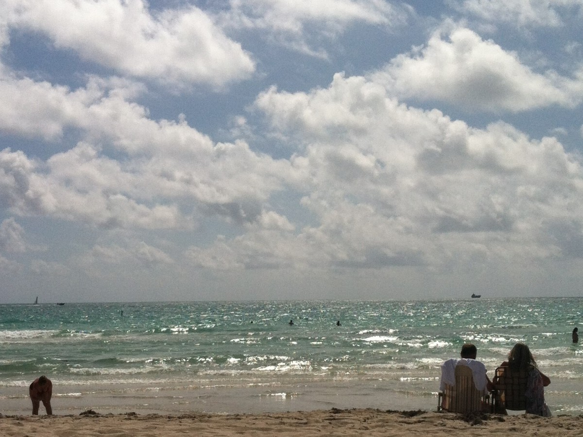 Miami Ocean View