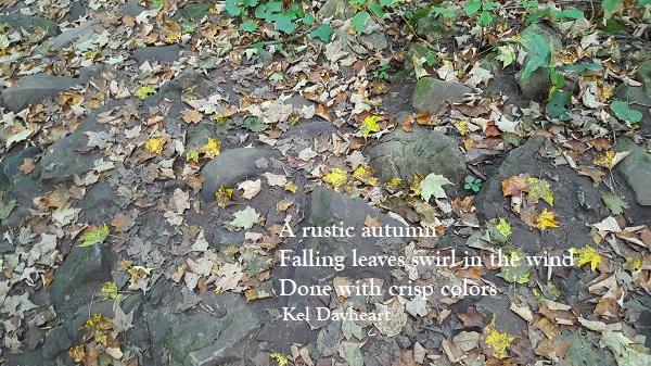 haiku 68 a115