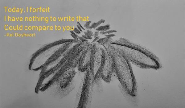 Haiku 84 go75