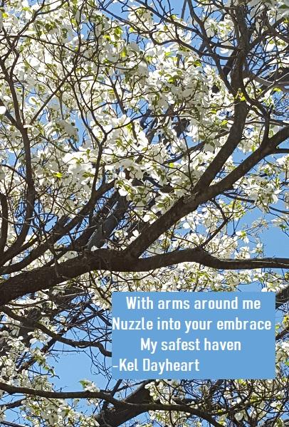 haiku 101 a298 version 2