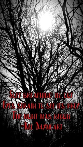 haiku 123 g243